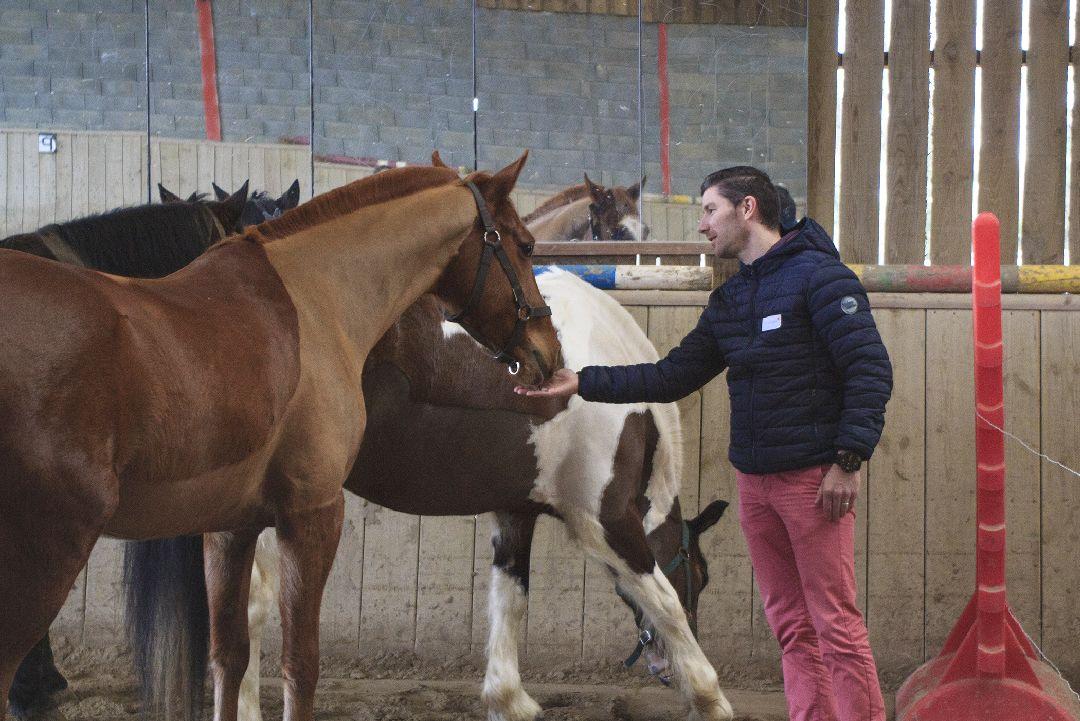 Equité équi-coaching avec cheval pour Biocoop
