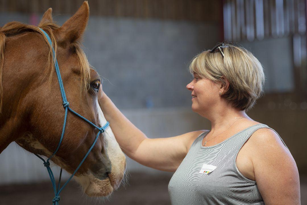 Equité équi-coaching avec cheval pour Jeulin