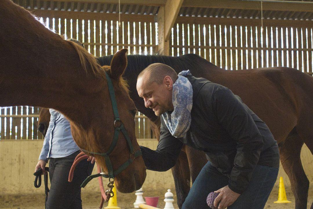 Equité équi-coaching coach cheval pour Hutchinson
