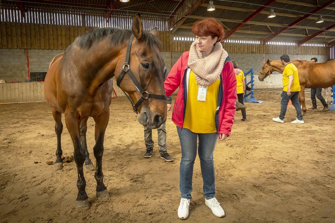 Equité équi-coaching groupe avec cheval pour Groupe Vert