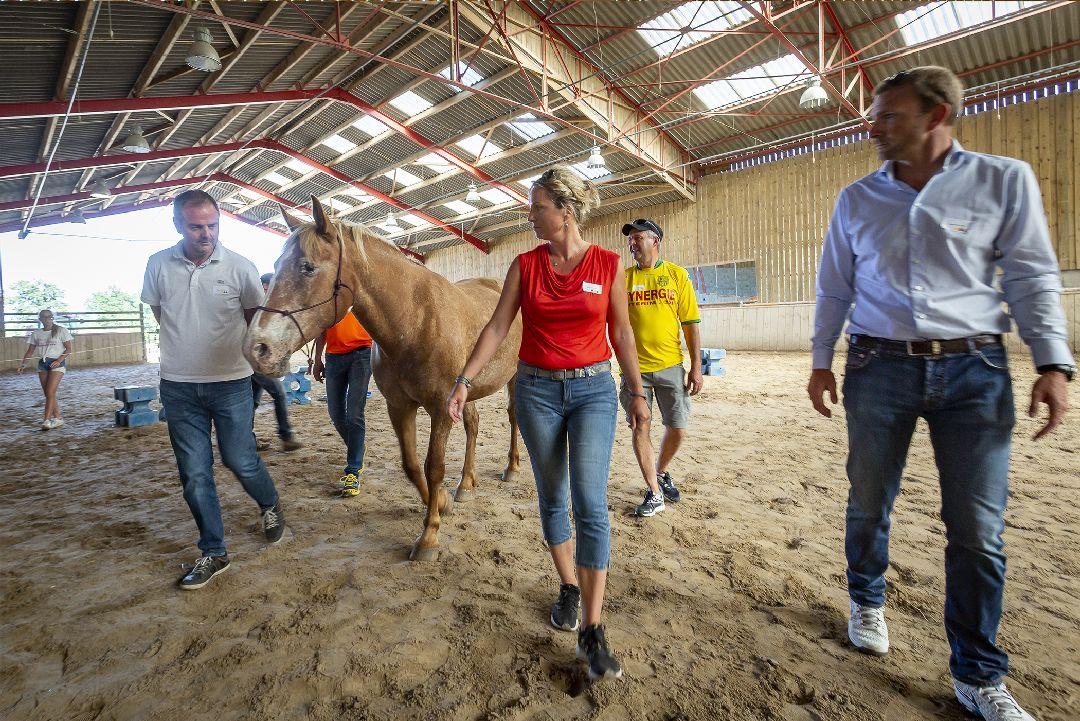 Equité équi-coaching groupe avec cheval pour Jeulin
