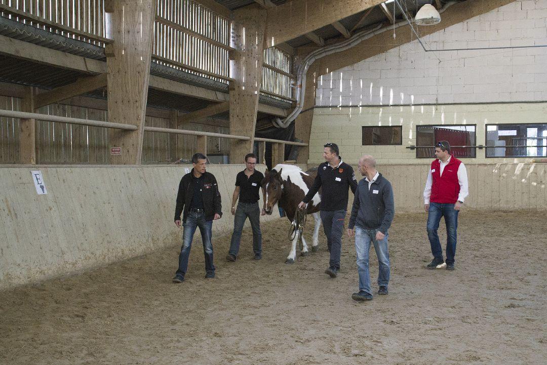 Equité équi-coaching team avec cheval pour Hutchinson